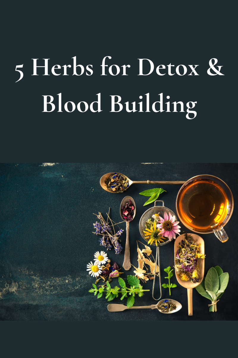 5 Herbs for Detox & Blood Building