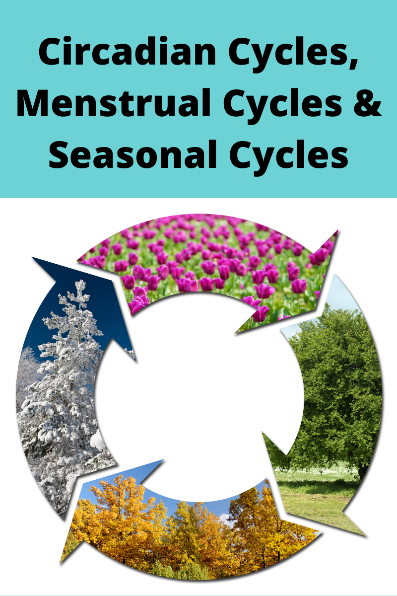 Circadian Cycles, Menstrual Cycles & Seasonal Cycles